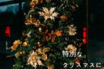 温泉とクリスマス